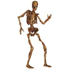 6 feet life size jointed scary skeleton halloween party haunted
