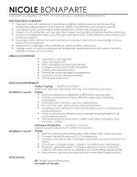 resume examples professional summary professional senior operations manager templates to showcase your professional senior operations manager templates to showcase your talent myperfectresume