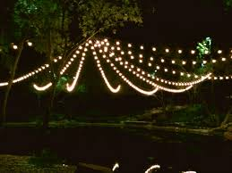 pictures string lights dallas landscape lighting