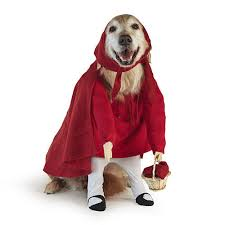 Dog Halloween Costumes Pet Halloween Costume Contest Southern Living