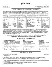 sample resume executive vice president analytical essays best rhetorical analysis essay writing websites