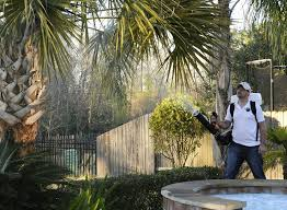 zika virus has phones ringing at pest control travel firms