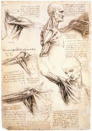 9 drawing exercises from leonardo da vinci with examples