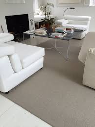 How To Clean A Sisal Rug 39 Best Synthetic Sisal Images On Pinterest Sisal Rugs Carpets