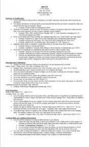 It Resume Examples by Examples Of Resumes 87 Enchanting Easy Resume Format Basic