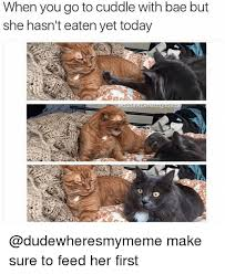 U Still Mad Meme - when you go to cuddle with bae but she hasn t eaten yet today make