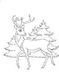 bambi coloring book
