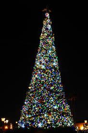christmas at walt disney world shutterthyme u0027s blog