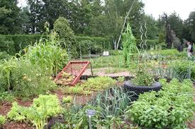 Vegetable Garden Restaurant by 75 Years Of Horticultural Excellence In Niagara Falls The Laptop