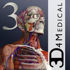 Google Human Anatomy Essential Anatomy 3 Android Apps On Google Play