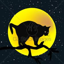 cat at and moon vector gl stock images
