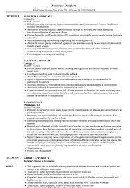 sle resume templates accountants compilation report income tax associate resume sles velvet jobs
