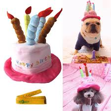amazon com cute adorable cat dog pet happy birthday party hat