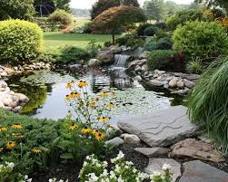 an eco friendly paradise green landscaping mnn mother nature