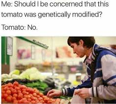Tomato Meme - dopl3r com memes me should i be concerned that this tomato was