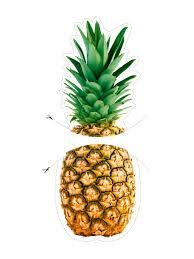 Pineapple Decorations For Kitchen by Hgtv Magazine Diy Kitchen Art Downloads Hgtv