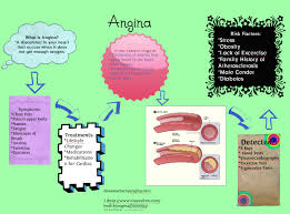 angina project for anatomy u0026 physiology publish with glogster