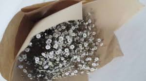 Baby S Breath Flower Baby U0027s Breath Flower Bouquet With Brown Paper Wrapping Youtube
