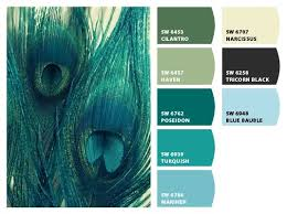 best peacock blue paint color affordable find this pin and more