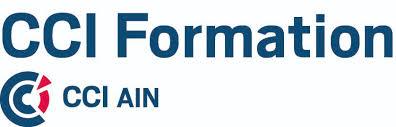 chambre de commerce de l ain centres d examen partenaires du certificat voltaire