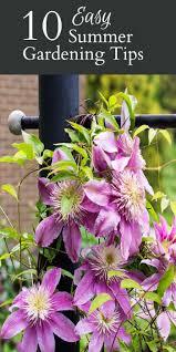 10 easy summer gardening tips hearth u0026 vine