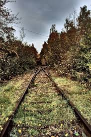 old train tracks free stock images by libreshot