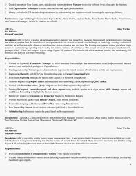 Ssrs Developer Resume Ssrs Developer Resume Free Resume Example And Writing Download
