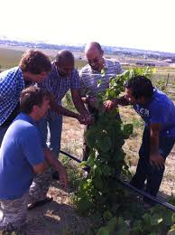 wyoming wine project creates new opportunities for academics and