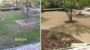 california backyard trees 28 images landscape restoration 555