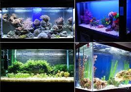 24 aquarium light bulb 12v 24 led aquarium light fish tank water plant tropical fish 3 mode