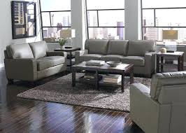 Microfiber Sectional Sofas by Furniture Arhaus Sectional For Easily Blends With Any Home