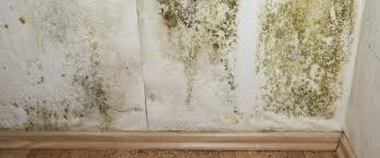 humidité mur chambre humidite mur chambre ventilation chambre a coucher humidite mur dans