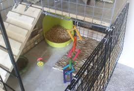 Make Rabbit Hutch How To Build A Rabbit Cage Using Cubes Advice For Indoor Rabbits