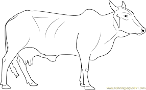 100 cow coloring pages to print download carrot and cow