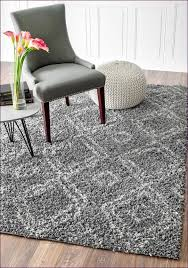 Ikea Area Rugs Furniture Shag Rugs Ikea Austin Area Rugs Ikea Contemporary Area