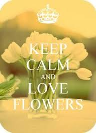 Flower And Love Quotes - for practical tools to shift from sadness anger and fear to joy