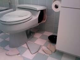 Kohler French Curve Toilet Seat Bathroom Blue Kohler Toilets Seats With White And Blue Floor Plus