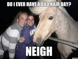 Chill Out Bro Meme - chill out bro i got this funny horse meme