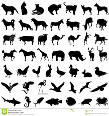 collection of animal vector stock photography image 2696502