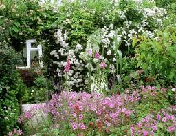 Cottage Gardening Ideas Designing A Cottage Garden