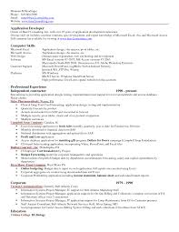 exle resume for application excel resume template application development computer skills resume