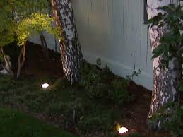 Landscape Up Lights Outdoor Landscape Lighting Hgtv