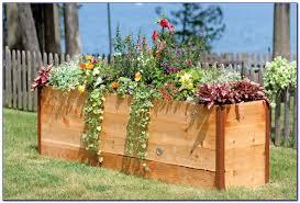 cedar for garden beds cedar grande elevated garden bed with cedar