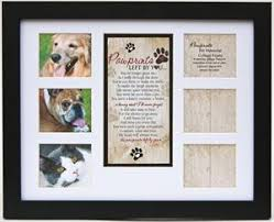 remembrance picture frame pawprints memorial pet collage frame pawprints left by you