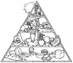 food pyramid coloring pages food groups pinterest food