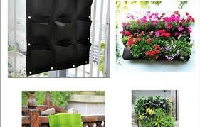 wall mounted herb garden plant singular garden wall plant holders photo concept wonderful