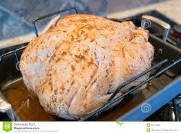 seasoned uncooked turkey in roasting pan closeup royalty free