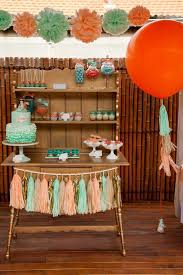 cajun party supplies 25 summer party themes