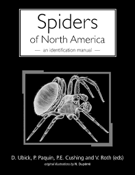 spiders of north america an identification manual paula cushing