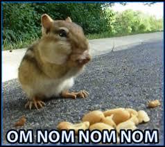 Nom Nom Nom Meme - surprise chipmunk om nom nom nom art time collective